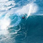 Wave Of Life Copyright Patrice Morin